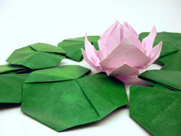 Цветы оригами из бумаги своими руками: подробный пошаговый мастер-класс как сделать бумажные цветы