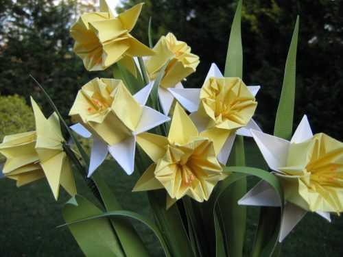 Нарциссы из бумаги — простые способы изготовления бумажных цветов своими руками (80 фото)